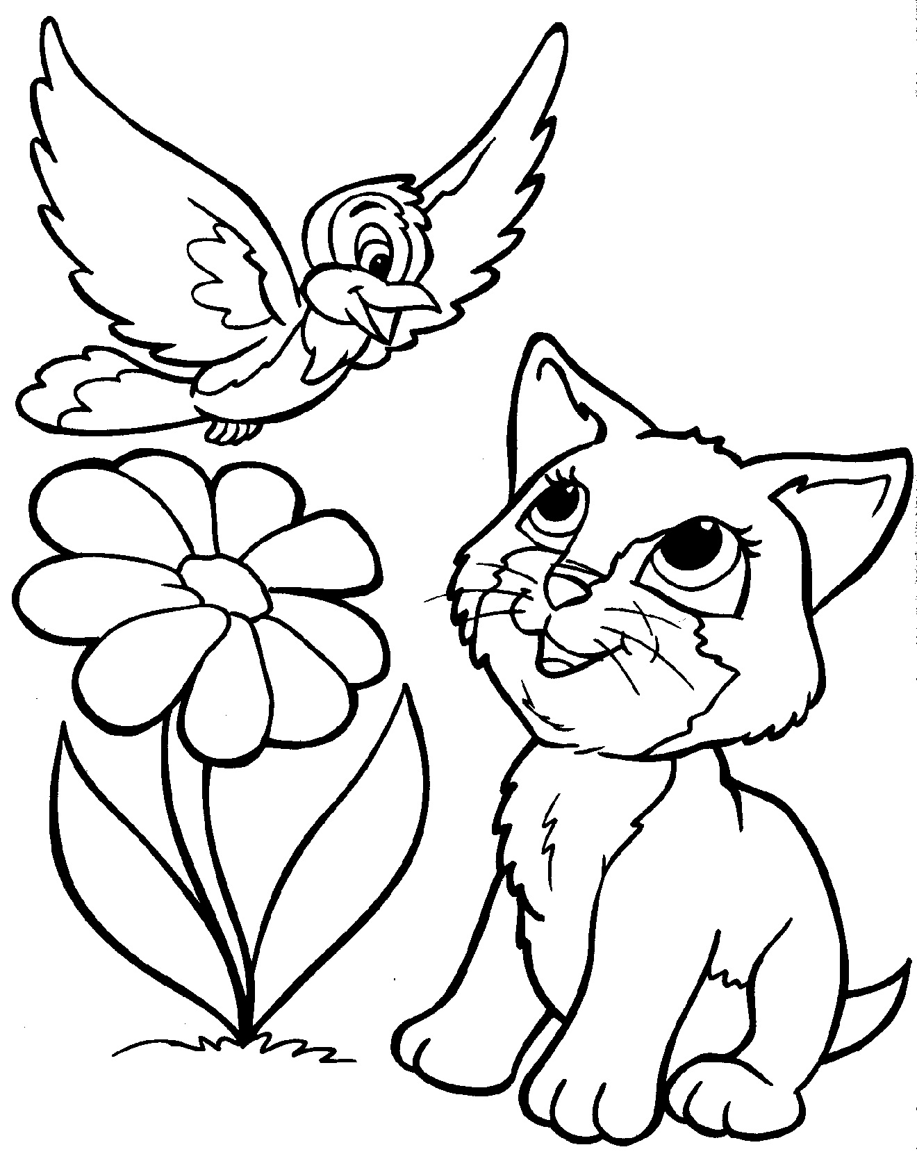 Amazoncom Creative Haven Creative Kittens Coloring Book